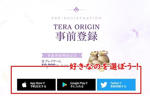 テラオリジン(TERA ORIGIN)